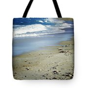 Ormond Beach Tote Bag