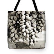 Ornamental Bush - Sepia Tote Bag