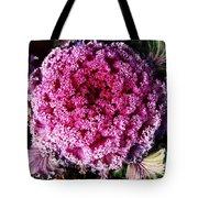 Ornamental Cabbage Plant Tote Bag