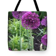 Ornamental Leek Flower Tote Bag