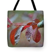 Ornamental Plum Tree Leaves With Raindrops Tote Bag