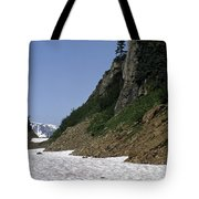 Orphaned Snow Field Tote Bag