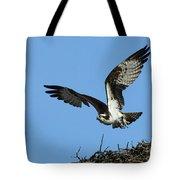 Osprey 9 Tote Bag