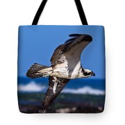 Osprey Bringing Home The Bacon Tote Bag