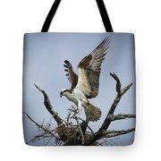 Osprey Building A New Nest Tote Bag