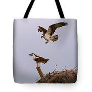 Osprey Coming In Tote Bag