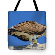 Osprey Eating Lunch Tote Bag