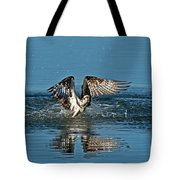 Osprey Getting Out Of The Water Tote Bag