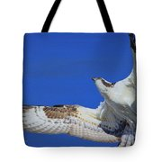 Osprey Grace And Beauty Tote Bag
