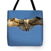 Osprey Hovering Tote Bag