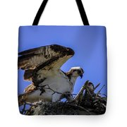 Osprey In The Nest Tote Bag