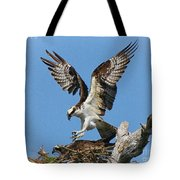 Osprey Mating Tote Bag