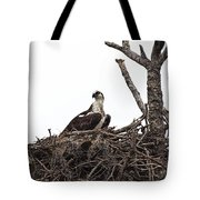 Osprey On A Nest In The Everglades Tote Bag