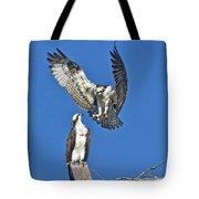 Osprey Pair Love In The Air Tote Bag