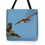 Osprey Pair Tote Bag