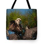 Osprey Preen 1 Tote Bag