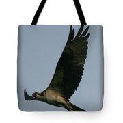 Osprey Reach  Tote Bag