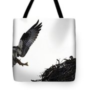 Osprey With Sushi Tote Bag