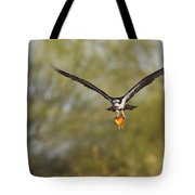 Osprey With Goldfish Tote Bag