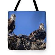 Ospreys In The Nest Tote Bag