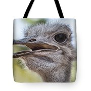 Ostrich Bokeh V2 Tote Bag