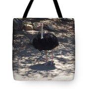 Ostrich Dance Tote Bag