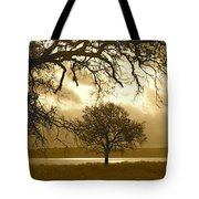 Other Worldly Tote Bag