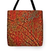 Otherworldy Light Traces Tote Bag