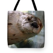 Otter Be Lookin' At You Kid Tote Bag