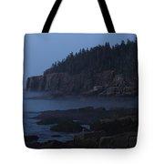 Otter Cliffs 3 Tote Bag