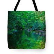 Otter Creek Reflection  Tote Bag