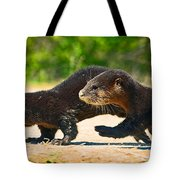Otters Crossing The Road  Tote Bag