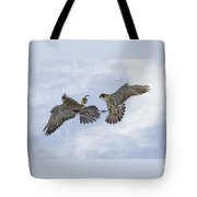 Young Peregrine Falcon And Ma Share In The Air Tote Bag