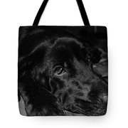Our Emma Tote Bag