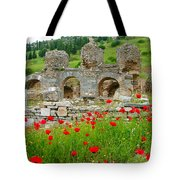 Our Entry Into Ephesus And Its Baths-turkey Tote Bag