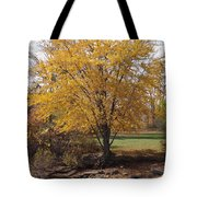 Our Favorite Spot Tote Bag