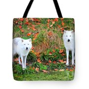 Our First Meeting Tote Bag