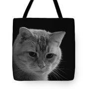 Our Lion In Black And White Tote Bag