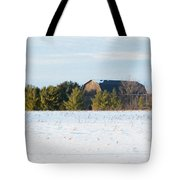 Out In The Snow Tote Bag