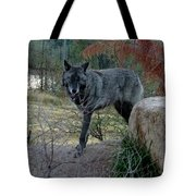 Out Of Africa Black Wolf Tote Bag
