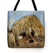 Out Of Africa Hyena 1 Tote Bag