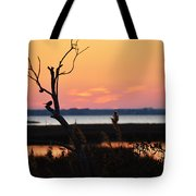 Ocean City Sunset Out On A Limb Tote Bag