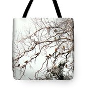 Out On A Limb First Snow Tote Bag