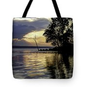 Out On Point Tote Bag