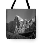 1m3621-bw-outlier Of  Mt. Murchison  Tote Bag