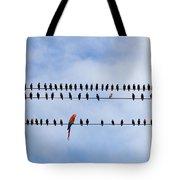 Odd Bird Out Tote Bag