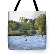 Over The Marsh Tote Bag