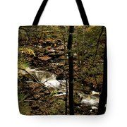 Over The River And Thru The Wood Tote Bag
