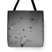Over Tree Tops Tote Bag