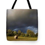 Overcast - Before Rain Tote Bag by Michal Boubin